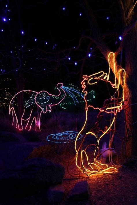 cheyenne mountain zoo lights iron blog
