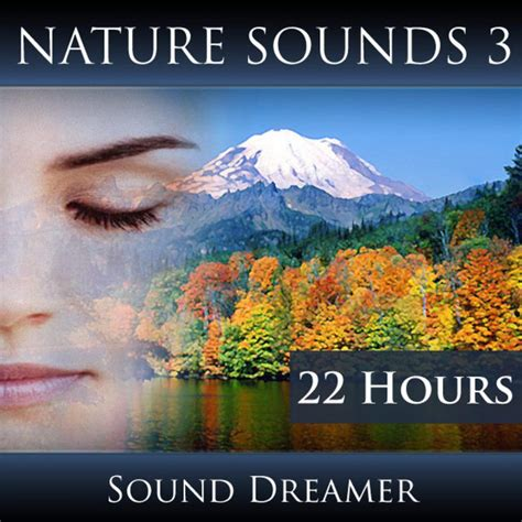 calm ocean wave sounds 2 hours a song by sound dreamer