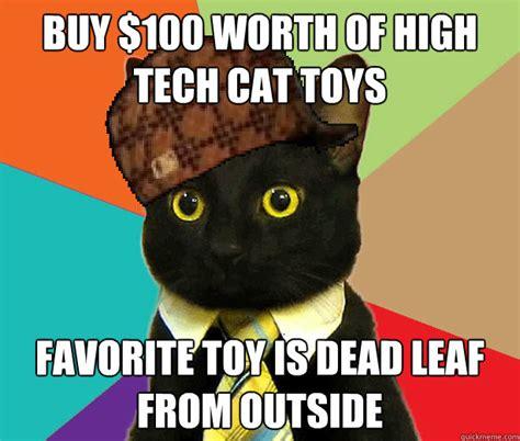 Internet Cat Meme - internet cat meme internet treasures pinterest meme