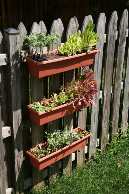 Garden ideas gardening ideas fence gardening mini garden vertical