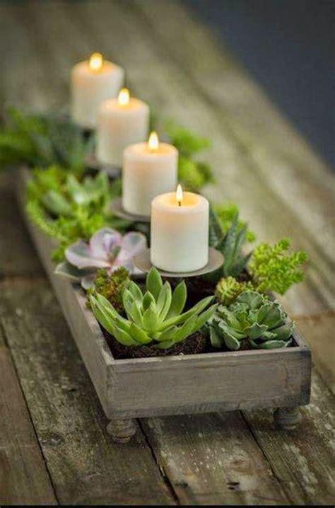 Pflegeleicht Gartenpflanzen by Sukkulenten Pflege Wie Pflegeleicht Sind Sukkulenten