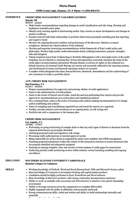 credit risk management resume sles velvet