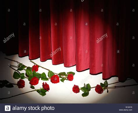 curtain call theatre theatre curtain call with red roses stock photo royalty