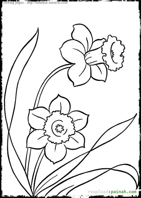 easy coloring pages for girls freecoloring4u com