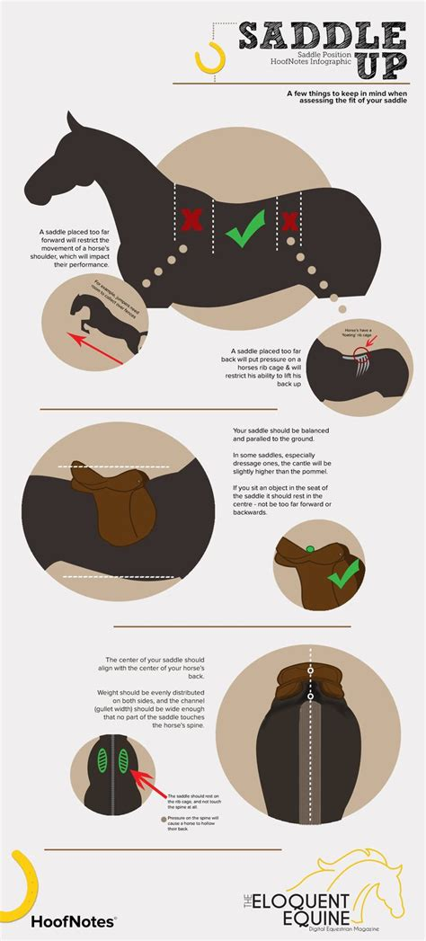 Saddle Up by Saddle Up A Hoofnotes Infographic A Few Things To Keep