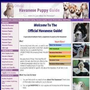 honor havanese reviews animals pets page 2 global weblinks directory