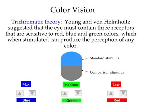 Color Blind Blue Green Mod 14 Basic Concepts And Vision