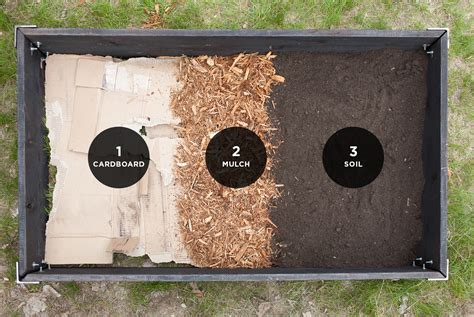 Raised Garden Bed Layers The Fresh Exchange Cardboard Raised Bed Soil Mix Vegetable Garden