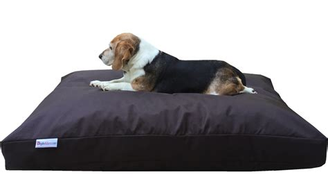 large dog pillow bed dogbedless large memory foam dog bed pillow with