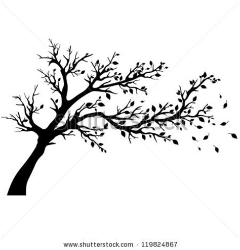 tree silhouette stock images royalty free images