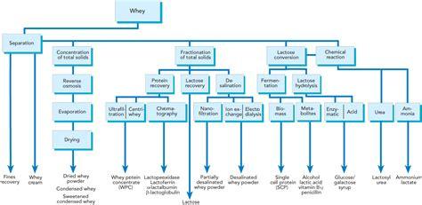 whey processing dairy processing handbook