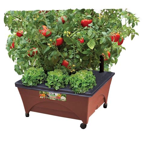 Vegetable Planterbag Raised Bed Tomato Print city pickers 24 5 in x 20 5 in patio raised garden bed grow box kit with watering system and