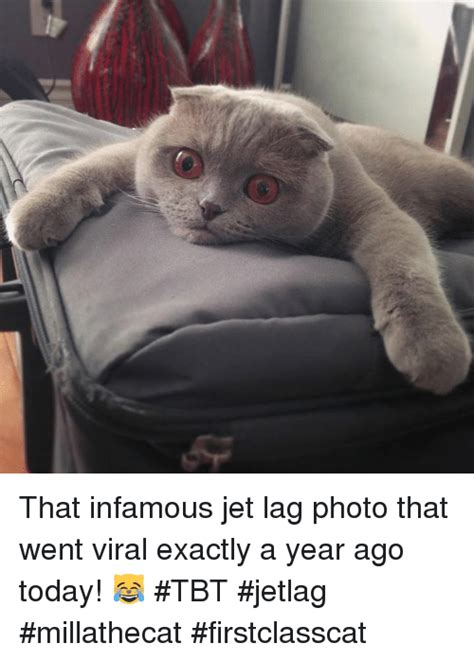Jet Lag Meme - that infamous jet lag photo that went viral exactly a year