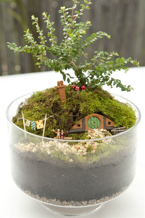 Garden Accessories Nz Miniature Garden Accessories Nz 28 Images Best 25