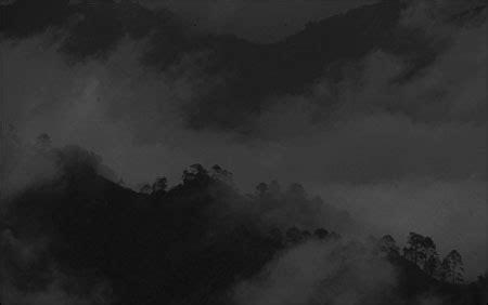 quetzal skiff photojournalism and environment stories nieman reports