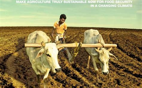 un report says small scale organic farming only way to feed the world grid world up before it s late sacred ecology