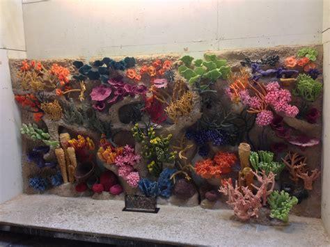 living color aquarium living color aquariums gallery of jellyfish living