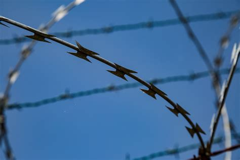 wire images barbed wire free stock photo domain pictures