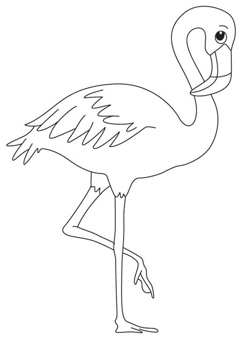 puffin bird coloring page puffin coloring page az coloring pages