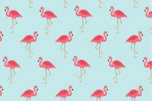 Flamingo seamless pattern ~ Patterns ~ Creative Market