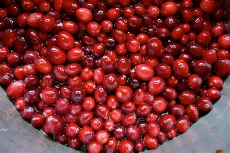 maple brown sugar cranberry sauce recipe cookin canuck