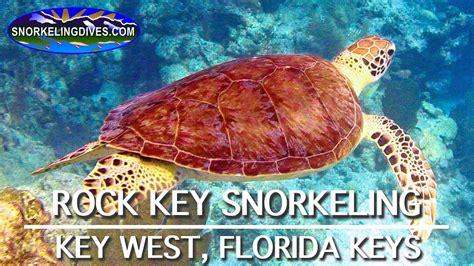 snorkeling in key west without a boat snorkeling rock key key west florida youtube