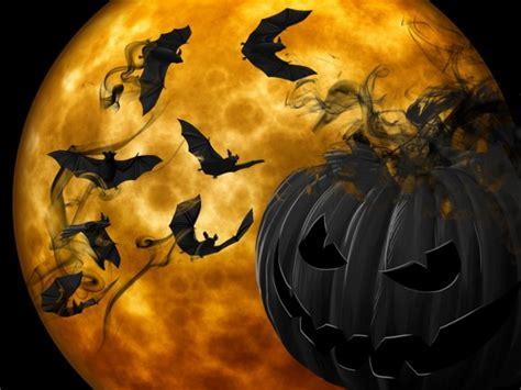 imagenes de halloween que den miedo las mejores frases sobre el miedo no s 243 lo para halloween