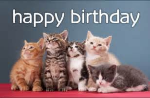 free birthday kittens ecard email personalized cards happy cat litle pups