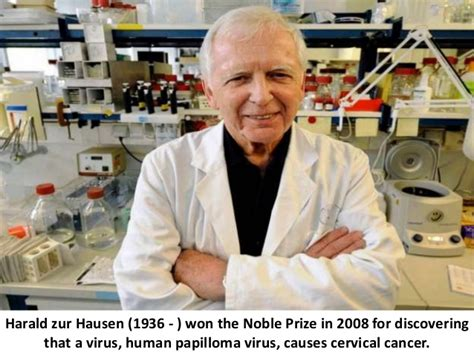 zur hausen and cow s milk target of the new studies against