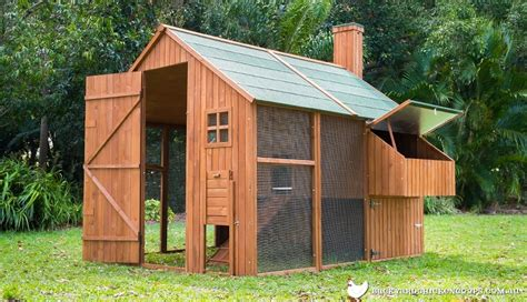 Backyard Chicken Coops Australia Things You Need To Consider When Chicken Coop Plans