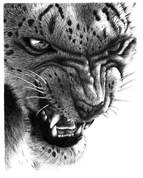 snow leopard by conchenn on deviantart