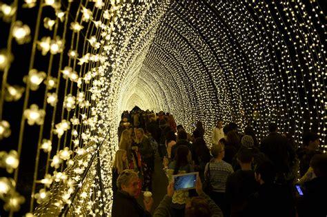 Vivid Sydney Lights Australia