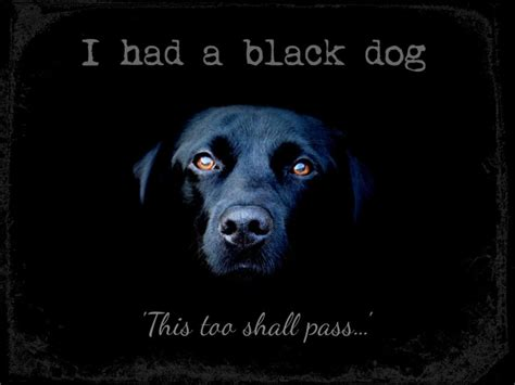 i had a black dog matthew williams love laughter amp truth