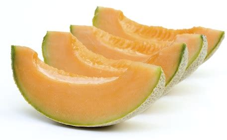 can my cantaloupe can dogs eat cantaloupe can dogs eat this
