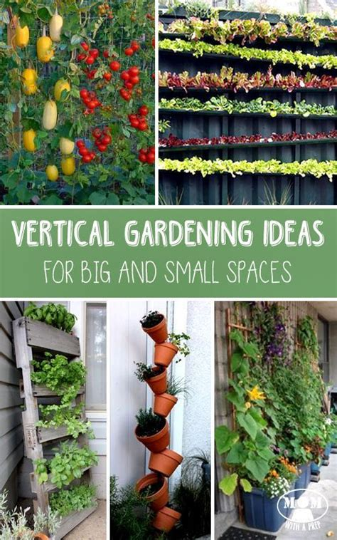 Vertical Gardening Techniques 38 Best Images About Back Yard Awesomeness On