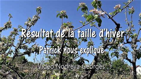 Taille Hiver by Taille Des Pommiers R 233 Sultat De La Taille D Hiver