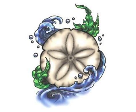 sand dollar tattoos designs tattoos sand dollar tattoos tattoos seashell
