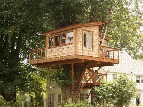 outdoor fantastic treehouse plans awesome treehouse