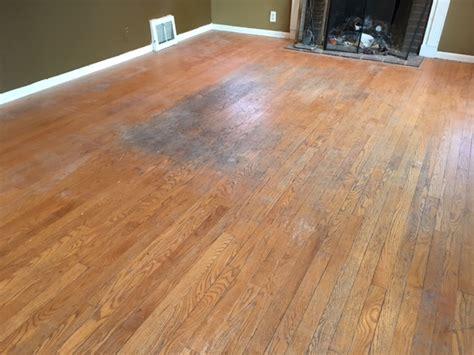 Urine Wood Floors by Getting Rid Of Urine Smells In Hardwood Floors Arne S