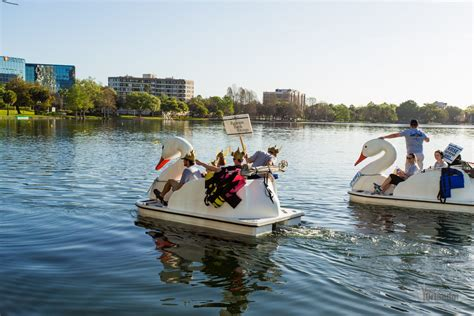 swan boats in central park rotary club of orlando to host rotary swan boat race