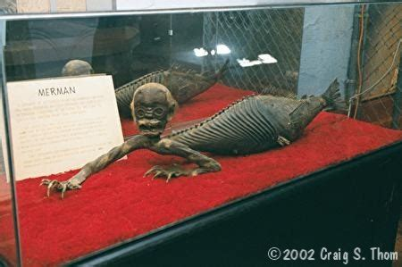 mummies  real people images  pinterest