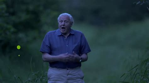 light on earth david attenborough official selection wiff 2017 david attenborough s light on