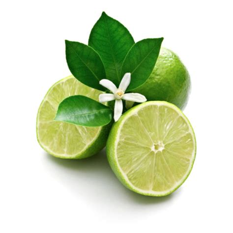 Lime 15ml lime essential from iloveoils