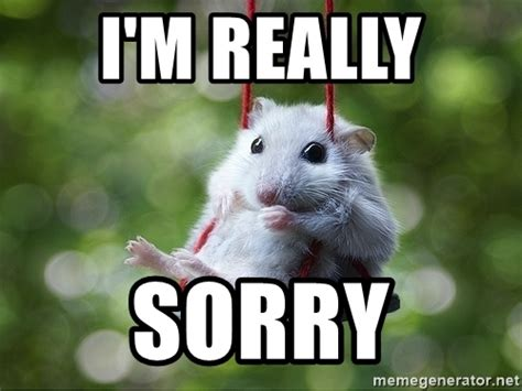 I Am Sorry Meme - i m really sorry sorry i m not sorry meme generator