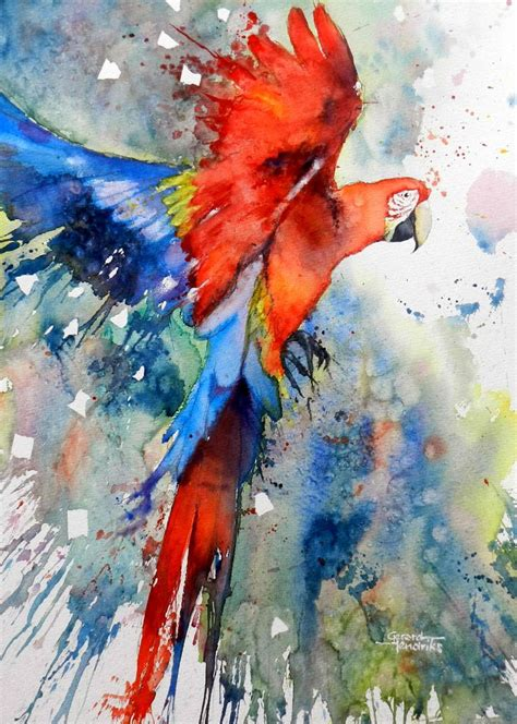 libro drawing and painting animals top 25 best watercolor bird ideas on pintura bird art and watercolor