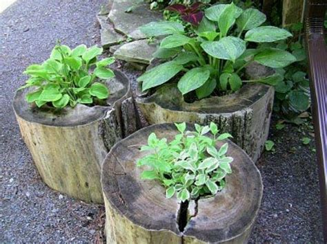 log planters garden ideas