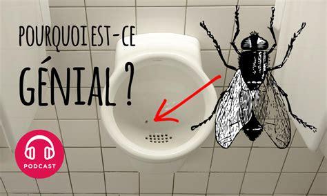 mouche toilettes amsterdam pourquoi l id 233 e des fausses mouches dans les urinoirs
