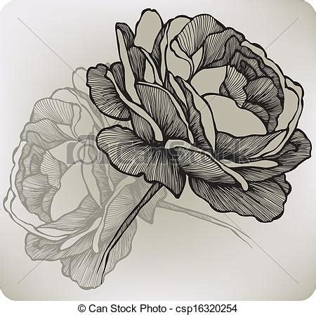 clipart vector of blooming rose hand drawing vector