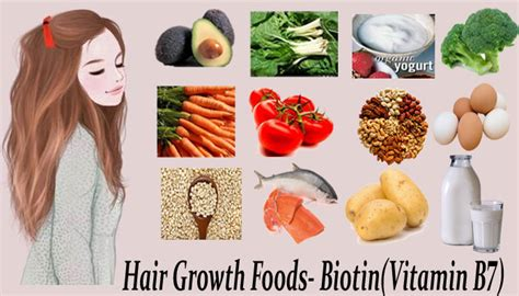 7 facts about biotin and hair growth vitamin b7 rich foods food