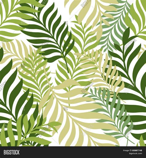 seamless pattern nature green palm tree leaves vector vector photo bigstock